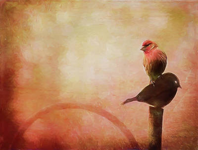 Finch Mixed Media - Two Birds In The Mist by Bellesouth Studio