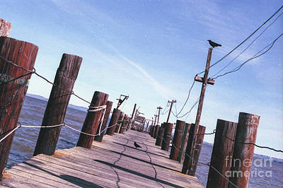 Photograph - Two Birds On A Pier by Ana V Ramirez