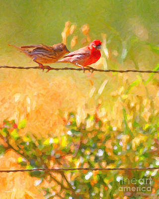 Avian Digital Art - Two Birds On A Wire by Wingsdomain Art and Photography