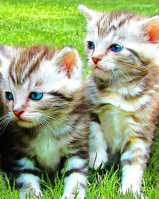 Photograph - Two Blue Eye Kittens Painterly 20170916 by Wingsdomain Art and Photography