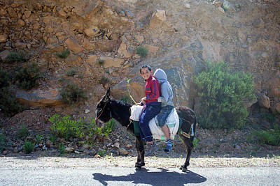 Photograph - Two Boys On A Donkey by Patricia Hofmeester