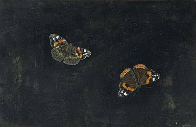 Curated Beach Towels - Two Butterflies by Giovanna Garzoni. by Giovanna Garzoni