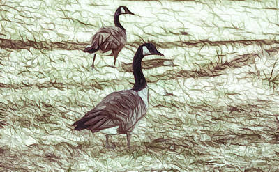 Canadian Geese Painting - Two Canadian Geese 2 by Lanjee Chee