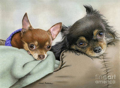 Chihuahua Portraits Painting - Two Chi's In A Pod by Sarah Batalka