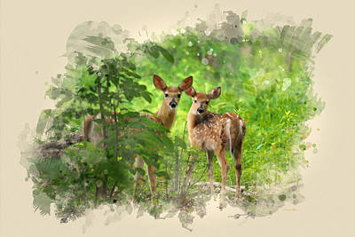 Two Deer Fawns Watercolor Art Art Print