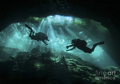 Two Divers Silhouetted In Light Art Print by Karen Doody