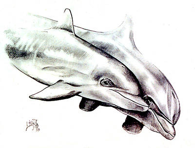 Two Dolphins Art Print by John Keaton