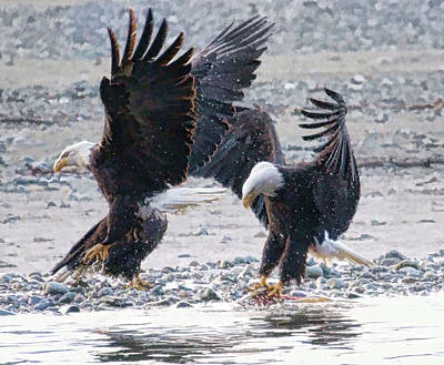 Two Eagles Art Print by Clarence Alford