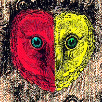 Color Block Mixed Media - Two Face Owl by Brandi Fitzgerald