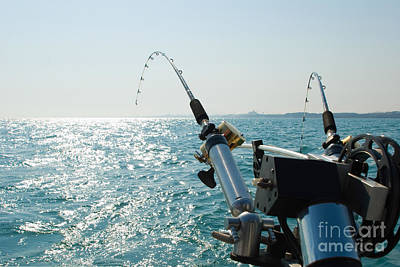 Commercial Photograph - Two Fishing Rods On Back Of Boat by Paul Velgos