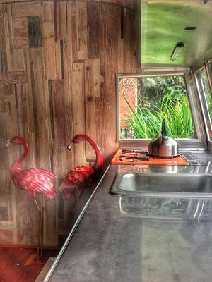 Photograph - Two Flamingos And A Tea Kettle by Patricia E Sundik