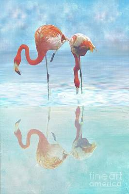 Digital Art - Two Flamingos Searching For Food by Janette Boyd