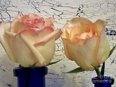 Two Fluffy Roses Art Print by Marsha Heiken
