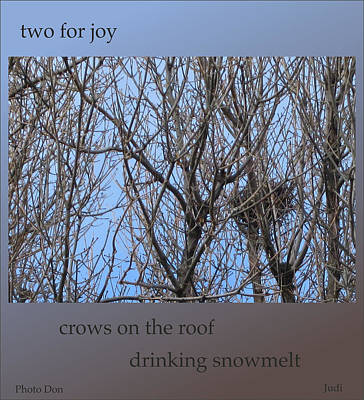 Digital Art - Two For Joy Spring Haiga by Judi and Don Hall