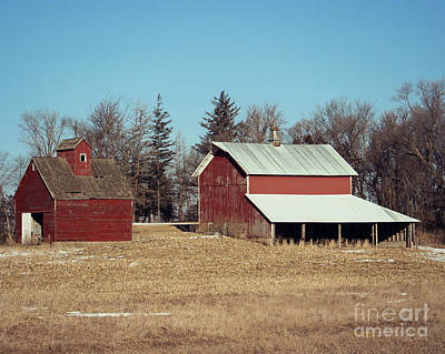 Photograph - Two For One On The Farm by Kathy M Krause