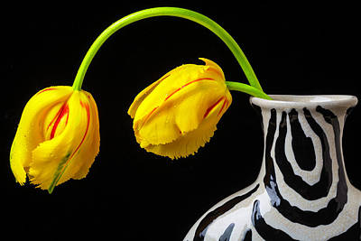 Tropical Garden Photograph - Two French Tulips In Striped Vase by Garry Gay