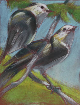 Wall Art - Pastel - Two Gray Jays by Pam Little