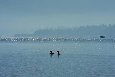 Photograph - Two Grebes On Eagle Lake by Kirsten Giving