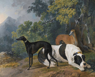 Mastif Painting - Two Greyhounds And A Mastif Belonging  by MotionAge Designs