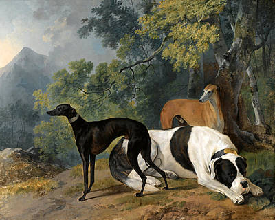 Mastif Painting - Two Greyhounds And A Mastif Belonging To The Duke Of Hamilton by Sawrey Gilpin