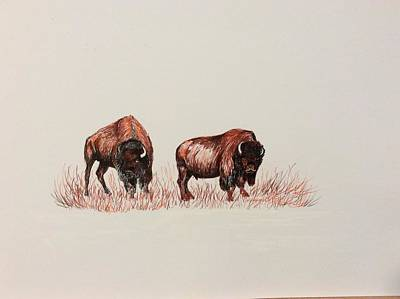 Drawing - Two Grumpy Bisons  by Ellen Canfield