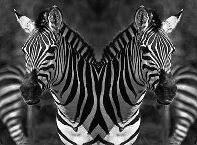 Black And White Horses Digital Art - Two Head's by Lou  Novick