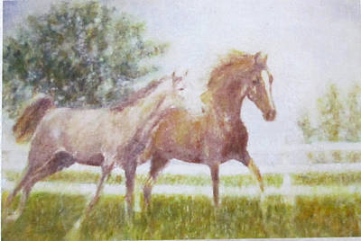 Painting - Two Horses   by Glenda Crigger
