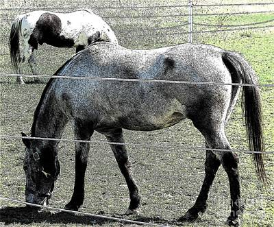 Photograph - Two Horses Grazing Ink Sketch Effect by Rose Santuci-Sofranko