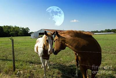Photograph - Two Horses Kissing by Bob Pardue