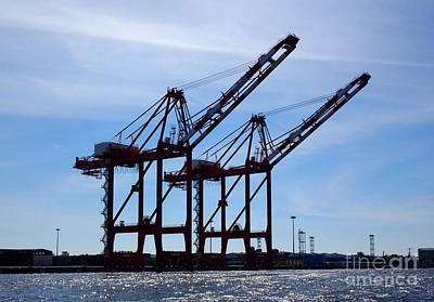 Photograph - Two Large Cranes For Loading Containers by Yali Shi
