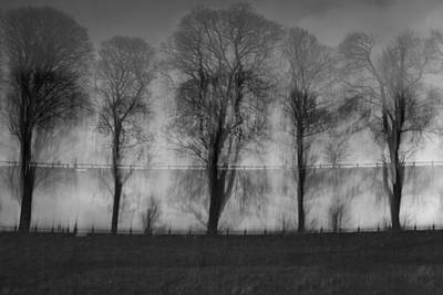 Intentional Camera Movement Photograph - Two Lines Of Trees by Chris Dale