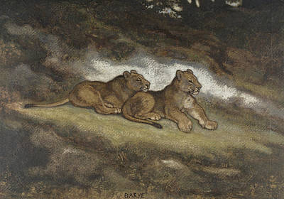 Drawing - Two Lion Cubs by Antoine-Louis Barye