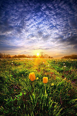 Two Lips That Touch At Dawn Art Print by Phil Koch