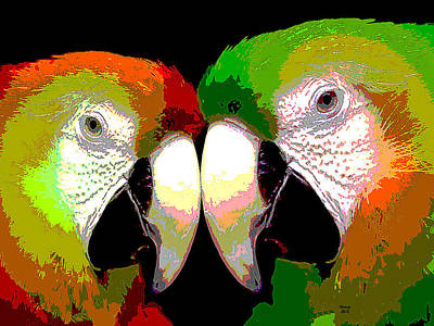 Sandpiper Mixed Media - Two Loving Macaws by Charles Shoup