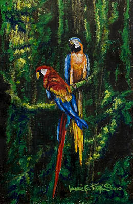 Pastel - Two Macaws In The Rain Forest by Laurie Tietjen