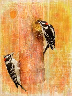 Digital Art - Two Male Downy Woodpeckers by Rusty R Smith