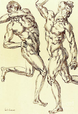 Sexual Lovers Drawing - Two Male Nude Studies by Baccio Bandinelli