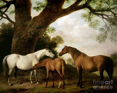 Tree Oil Painting - Two Mares And A Foal by George Stubbs