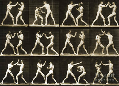 Two Men Boxing Art Print by Eadweard Muybridge