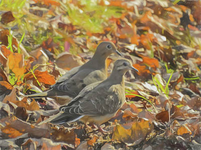 Photograph - Two Mourning Doves Standing Together In Colorful Fall Leaves. by Rusty R Smith