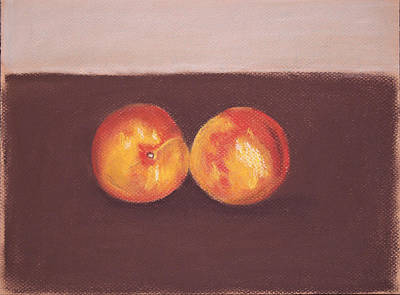 Pastel - Two Nectarines by Marina Garrison