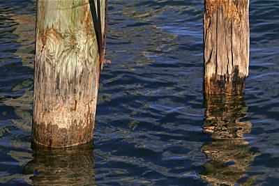 Photograph - Two Old Pilings 3 by Mary Bedy