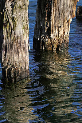 Photograph - Two Old Pilings 4 by Mary Bedy