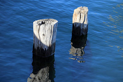 Photograph - Two Old Pilings With Reflections 2 by Mary Bedy