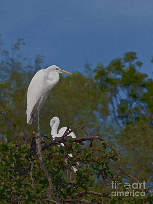 Photograph - Two On A Perch by Ken Frischkorn