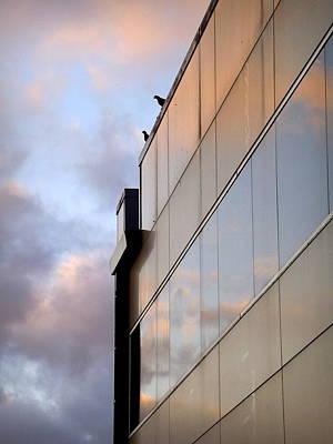 Photograph - Two On Top by Viviana  Nadowski