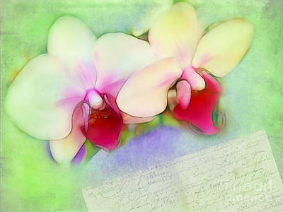 Photograph - Two Orchids Reading A Letter by Judi Bagwell