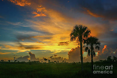 Two Palm Silhouette Sunrise Art Print