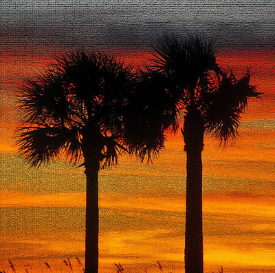 Photograph - Two Palms At Sunset by David Lee Thompson