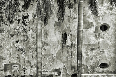 Black Photograph - Two Palms by Michael Evans